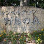 関東で小鳥とふれあい?!越谷のキャンベルタウン野鳥の森に行ってみた!!