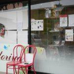 鳥カフェ「kotoriya-ことりや-」で鳥を見ながらランチ!千葉県市川市